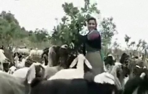 اهنگ کردی و فارسی حسن زیرک - کلیپ قدیمی
