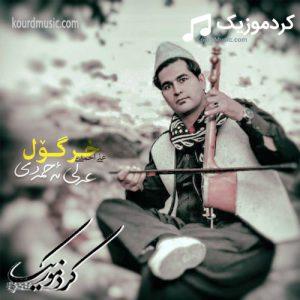 آهنگ خر گول علی احمدی