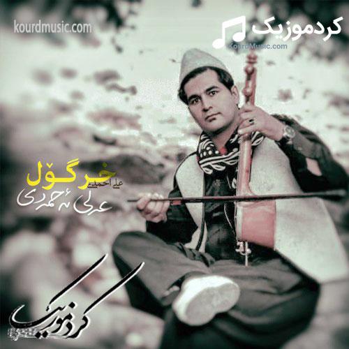 آهنگ خر گول علی احمدیآهنگ لری شاد