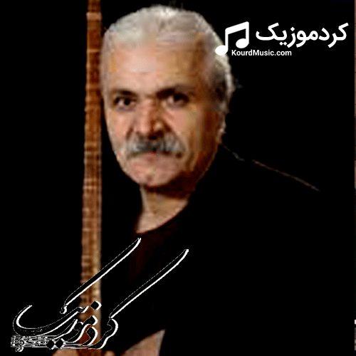 """دانلود تمام اهنگ های هنرمند """" علی زندی """""""