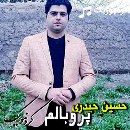 دانلود اهنگ حسین حیدری پروبالم