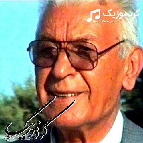 """اهنگ محمد ماملی بنام """"له ویرانی دلی من"""""""
