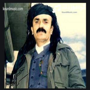سید محمد صفایی